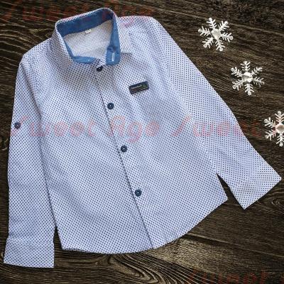 Рубашка AH 0122б